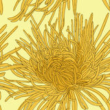 Abstrakt blom- bakgrund. Royaltyfri Fotografi