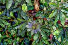 Abstrakt blom- bakgrund med blommor och sidor av passionsblomman Royaltyfri Bild