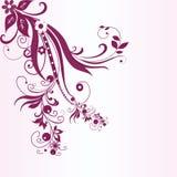 abstrakt blom- fjäder Royaltyfri Foto