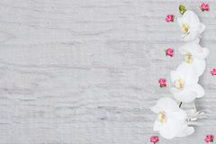 Abstrakt blom- modell, små blommor och vit orkidé på träbakgrund, bästa sikt, lekmanna- lägenhet, Arkivfoton