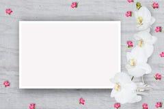 Abstrakt blom- modell, små blommor på pappen med ett ark av papper för text, bästa sikt, åtlöje upp Arkivfoto