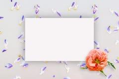 Abstrakt blom- modell, små blommor på pappen med ett ark av papper för text, bästa sikt, åtlöje upp Arkivfoton