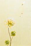 Abstrakt blom- tapet Arkivbilder