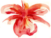 Abstrakt blom- vattenfärgmålningar Arkivfoton