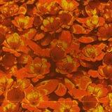 Abstrakt blomma Art Background Royaltyfria Bilder