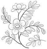 Abstrakt blomma, konturer Arkivbild