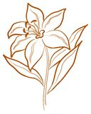 abstrakt blommapictogram Vektor Illustrationer