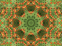 abstrakt blommor Royaltyfri Fotografi