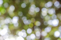 Abstrakt Bokeh naturlig färgbakgrund Arkivbild