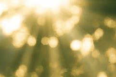 Abstrakt bokehbakgrund och solljus Arkivfoto