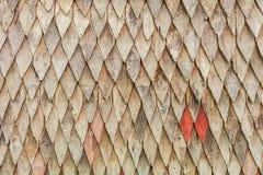 Abstrakt brun wood texturbakgrund Arkivfoton