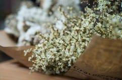 Abstrakt bukett av torkade blommor, suddighetsfokus Fotografering för Bildbyråer