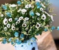 Abstrakt bukett av torkade blommor, suddighetsfokus Royaltyfri Bild