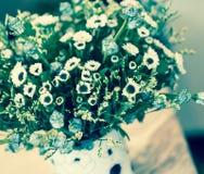 Abstrakt bukett av torkade blommor, suddighetsfokus Arkivfoton