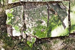 Abstrakt byggnadsförfalltextur Fotografering för Bildbyråer