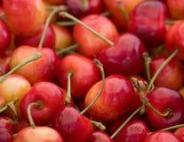 abstrakt Cherry Arkivbilder