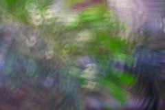 Abstrakt cirkulärbokeh Royaltyfri Fotografi