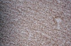 Abstrakt Closeup för ytterlighet av sandpapper Royaltyfri Bild