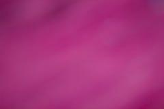 Abstrakt defocused suddig bakgrund för rosa färger Royaltyfri Bild
