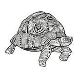 Abstrakt dekorativ sköldpadda stock illustrationer