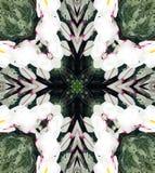 abstrakt designkaleidescope arkivfoto