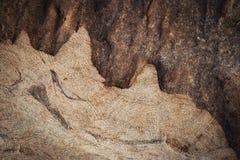 Abstrakt detalj av klippt sandsten Royaltyfria Bilder