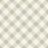 abstrakt diagonalt plädskott Royaltyfri Fotografi