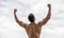Abstrakt ecobakgrunder f?r din design Kroppsbyggarevisningmuskler Muskul?s tillbaka man som isoleras p? vit torso och tillbaka ut royaltyfri foto
