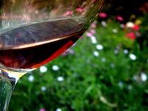 Abstrakt exponeringsglas av rött vinblommatemat royaltyfria foton
