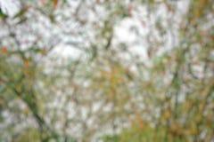 Abstrakt färgrik bakgrund, bokeh tänder bakgrund för härlig jul eller för det nya året Arkivbilder