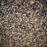 Abstrakt färgrik bakgrund med små stenar Royaltyfri Foto