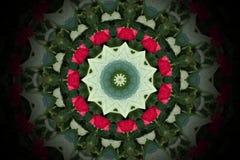 Abstrakt färgrik cirkelmandala och kalejdoskopmodell för lodisar stock illustrationer