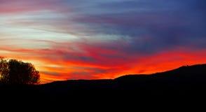 Abstrakt färgrikt solnedgånglandskap med trädkonturn Royaltyfri Bild