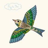 Abstrakt fågelfluga i färg vektor illustrationer