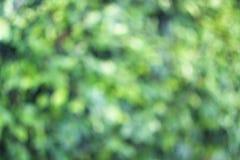 Abstrakt feriebakgrund Royaltyfri Foto