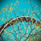 Abstrakt ferrishjul Royaltyfri Foto