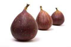 abstrakt figs Arkivfoton