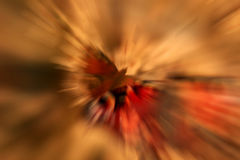 abstrakt fjäril Fotografering för Bildbyråer