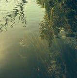 Abstrakt flodvatten Fotografering för Bildbyråer