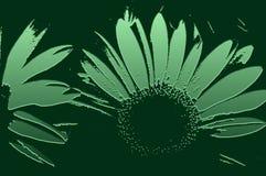 abstrakt floror vektor illustrationer