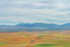 Abstrakt flyg- panorama- bästa sikt av en landslantgårdagricultura Arkivfoton