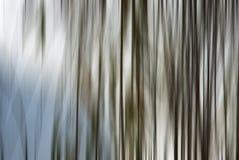 Abstrakt form Arkivbild