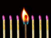 Abstrakt foto av den brinnande matchsticken samman med andra inte brända matchsticks Royaltyfri Bild