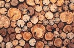 Abstrakt foto av en hög av naturlig träjournalbakgrund Fotografering för Bildbyråer
