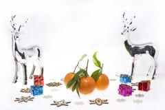 Abstrakt foto för julmandariner Arkivfoton