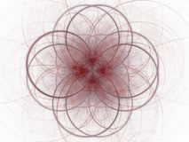 Abstrakt fractal med den röda blom- modellen av kurvor Arkivfoto
