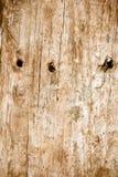 Abstrakt gammal träbakgrund Arkivbild