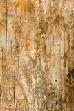 Abstrakt gammal träbakgrund Royaltyfri Foto