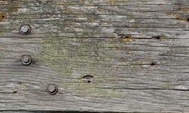 Abstrakt gammal wood textur Royaltyfri Fotografi