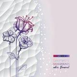 Abstrakt geometrisk vit bakgrund med blommor Arkivfoto